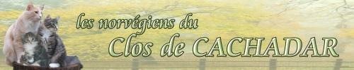 Chatterie du Clos De Cachadar